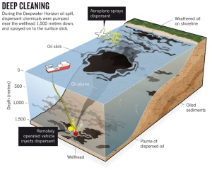 The use of dispersants to clean up oil in the Gulf of Mexico is examined